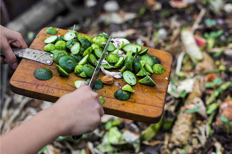 A beginners guide on how to make compost at home