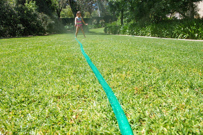 How to make your garden (more) water efficient this summer