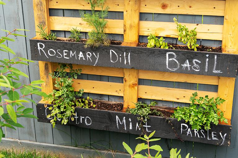 Ideas for planting your DIY vertical wall garden