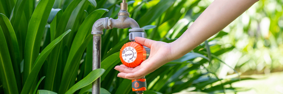 How to automate your watering